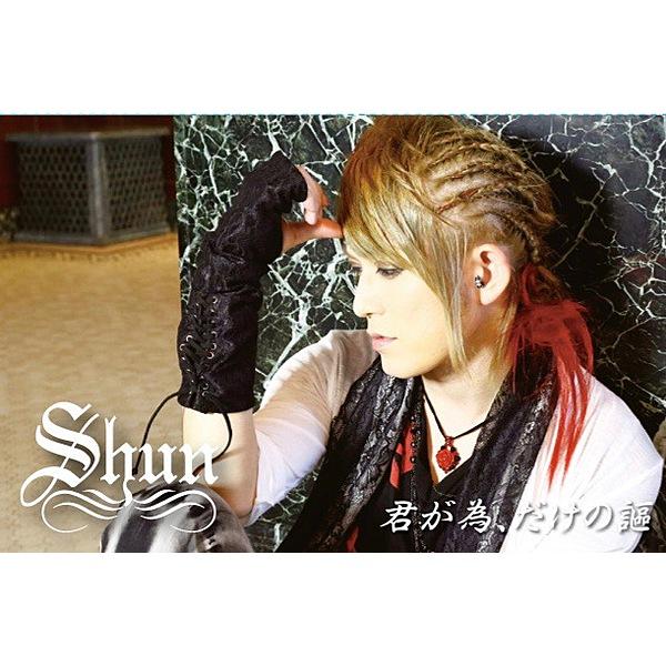 「SHUN 封入用」エムカード